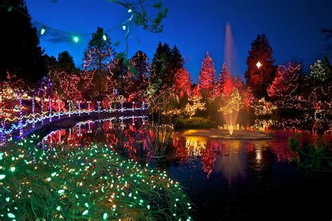Festival Of Lights At Vandusen Botanical Garden Lights And Selfie Vandusen Botanical Garden Reflects The Times With Its Festival Of