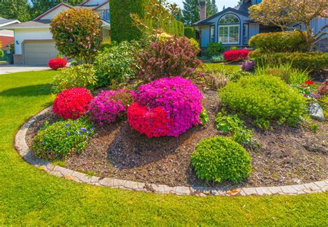 colorful shrubs 101 front yard garden ideas awesome photos home