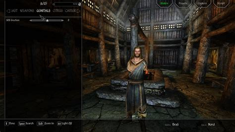 Sos Schlongs Of Skyrim Page 159 Downloads Skyrim | sos schlongs of skyrim page 159 downloads skyrim