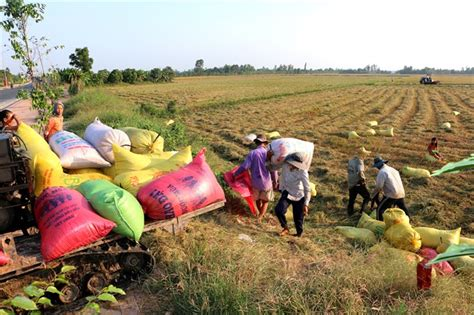 Must Farmers by Land Accumulation Must Benefit Farmers Society