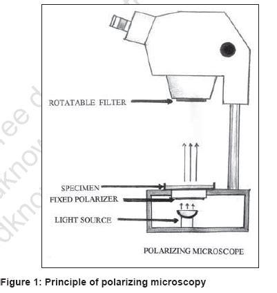 contoh bio line diagram of polarizing microscope choice image how to