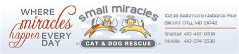 small miracles cat and rescue pet shelters in ellicott city md