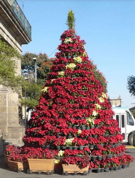 flowers christmas tree with white and red poinsettias jpg