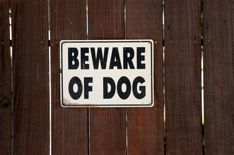 beware of signs beware of sign on brown fence free stock photo domain pictures