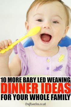 1000 images about baby led weaning on finger foods food and meals 1000 images about baby led weaning ideas and recipes on baby led weaning baby