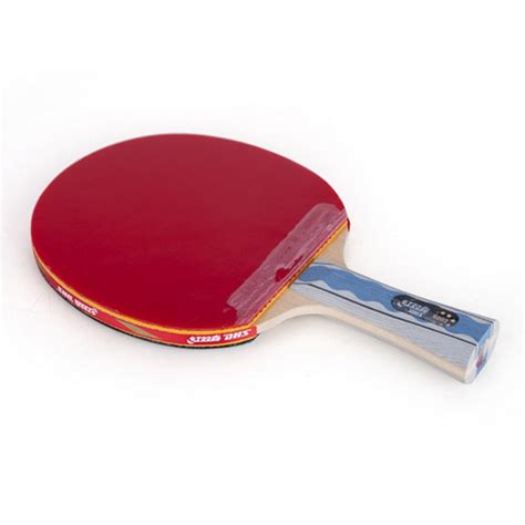 dhs table tennis racket top 5 best ping pong paddles