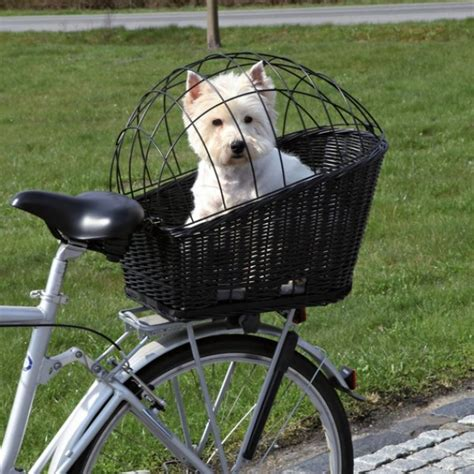 bike baskets for dogs gallery for gt bike carrier biking bikes for dogs and lattices