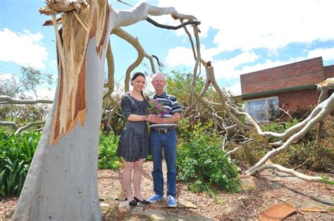 Freak Storm Will Not Stop Marital Bliss Port Macquarie News Bliss House Port Macquarie