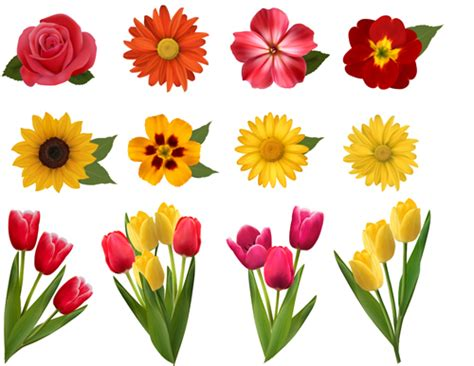 Set Flower vector beautiful flowers design set 03 free
