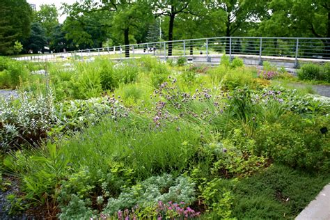 Greenroofs Com Projects Queens Botanical Garden Visitor Flushing Botanical Garden