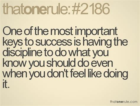 Discipline Key To Success An Essay On It by One Of The Most Important To Success Is The Discipline To Do What You You