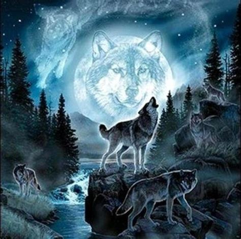 moon burned the wolf wars books 33 best images about wolfs on wolves a wolf