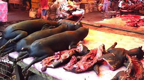 Mini 3 Di Manado wisata pasar dan kuliner ekstrim di indonesia pasar tomohon manado mp3speedy net
