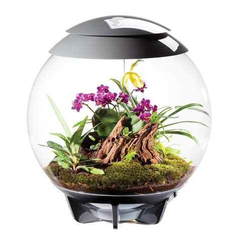 biorb air reptile terrarium kit grey  white aquarium