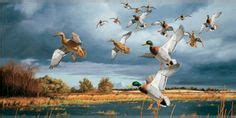 duck wall murals 1000 images about room ideas on buck deer duck and wall murals