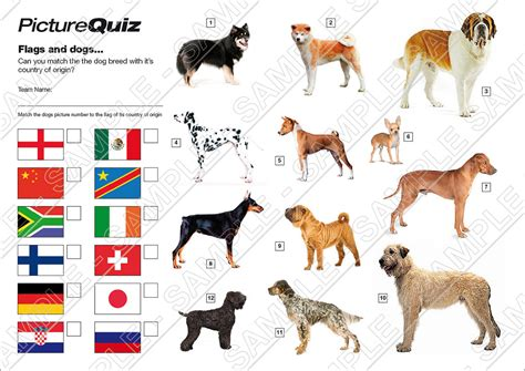 breed matcher quiz number 021 with flags and dogs picture