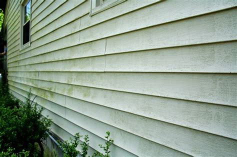 how to remove mold from house siding vinyl siding mold removal my clean house diy pinterest