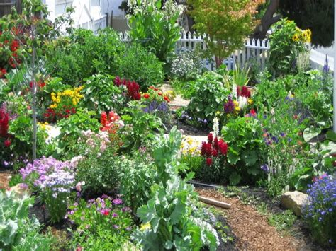 Flower Garden Layout Ideas Cottage Garden Ideas Cottage Flower Garden Designs Small