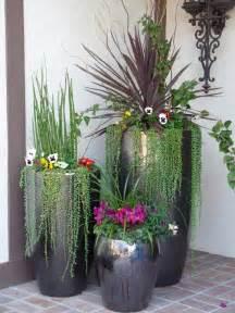 elegant nest outdoor potted plants