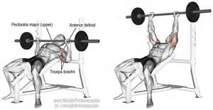 Bench Barbell Incline Barbell Bench Press Instructions And Video