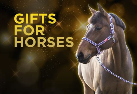 28 best christmas gifts for horses holiday gifts for