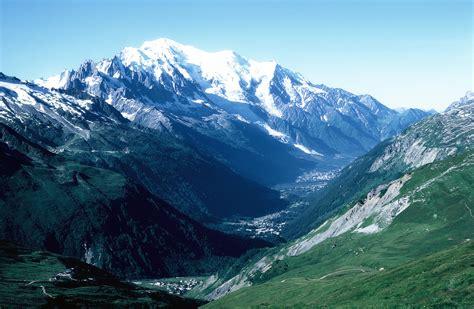 Mont Blanca chestnut monte blanc