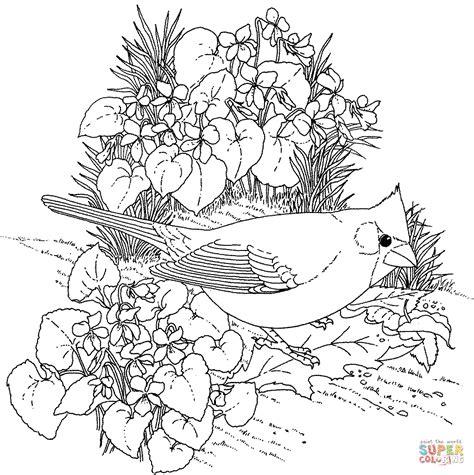 free coloring pages cardinal bird ausmalbild rotkardinal und veilchen staatsvogel und