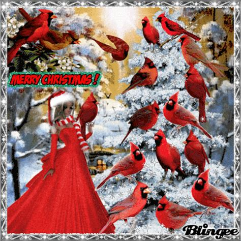 lady  red decorates tree  real cardinal birds picture  blingeecom