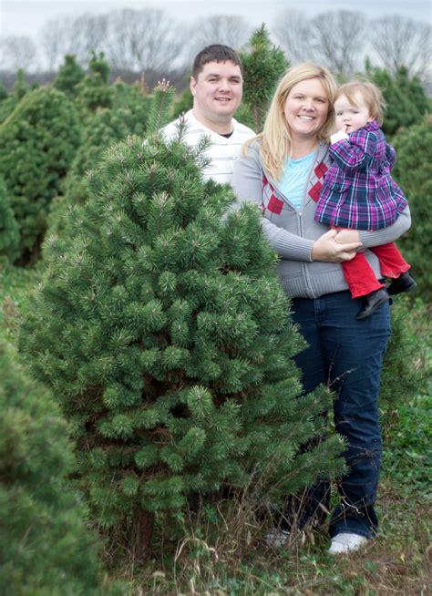 piney acres christmas tree farm is a beautiful family