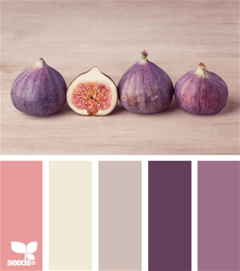 california design seeds color palettes