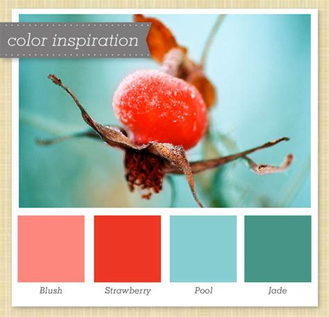 color inspiration sarah hearts pink red blue and jade color palette