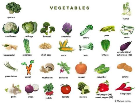 list of vegetables fruits and vegetables list of vegetables fruit and