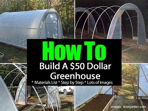 how to build a green house how to build a 50 dollar greenhouse