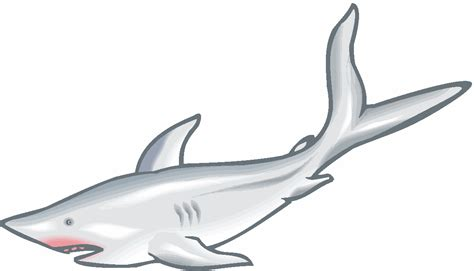 Great White Shark Clip by Great White Shark Clipart Black And White Clipart Best