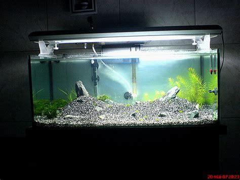 montagem de layout de aquario areia branca 301 moved permanently