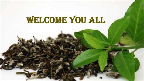 Teh Janna Tea Hpai tea scenario in india