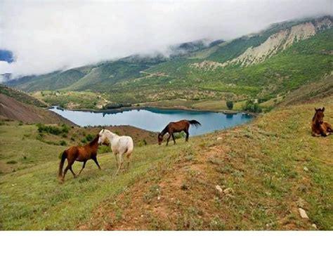 imagenes de recursos naturales vivos 3 importancia y cuidados de los recursos naturales