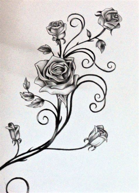 drawings of rose tattoos drawings of vines and leaves roses and the vine by