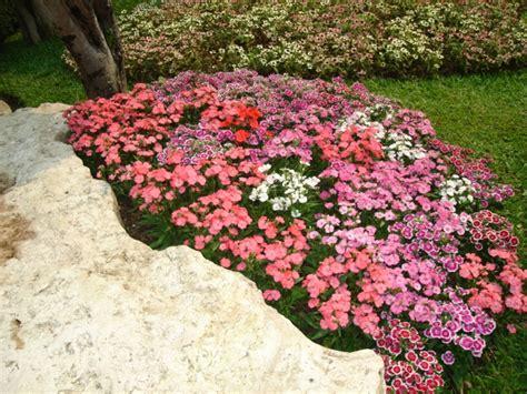 Wie Gestalte Ich Meinen Garten 2403 by 30 Gartengestaltung Ideen Der Traumgarten Zu Hause