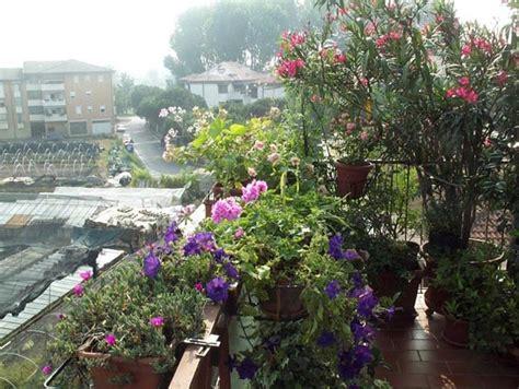 Terrazza A Livello Definizione by Definizione Di Terrazzo 28 Images Best Definizione Di