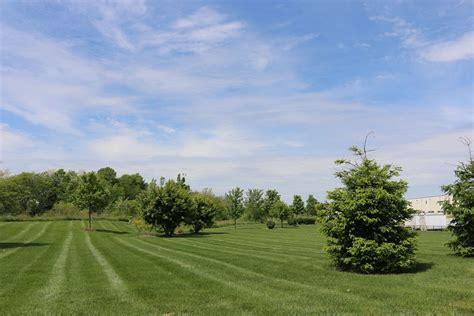 landscaping services green acres landscaping inc commercial landscape maintenance design landscape