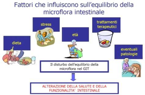 alimenti anti meteorismo civico20 news disbiosi flora batterica intestinale