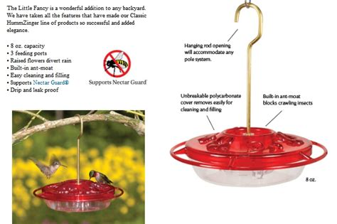 wild birds unlimited how drought affects hummingbirds