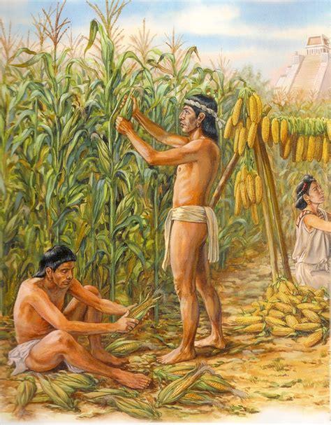 imagenes agricultura maya historia y cultura del ma 237 z inicio