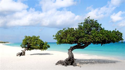 aruba beach wallpaper gallery