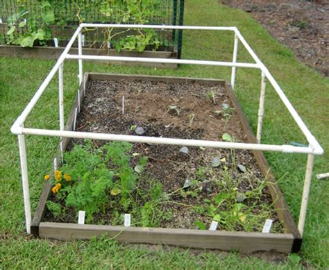 Vegetable Garden Netting Frame The Simple Ideas Of Pvc Trellis My Journey