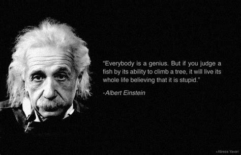 20 Inspirational Quotes of Famous People   Barnorama