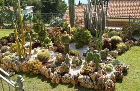 come fare un giardino di piante grasse creare un bel giardino con le piante grasse pagina 2 di 2