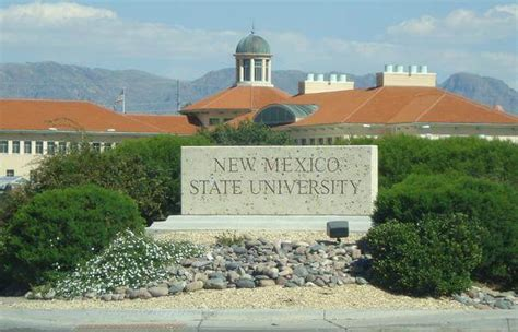 Top Mba Universities In Mexico by Top 20 Cheap Bachelor S Degrees Great Value Colleges