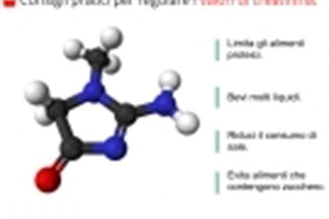 creatinina alta e alimentazione proteine nelle urine valori sintomi e cause della